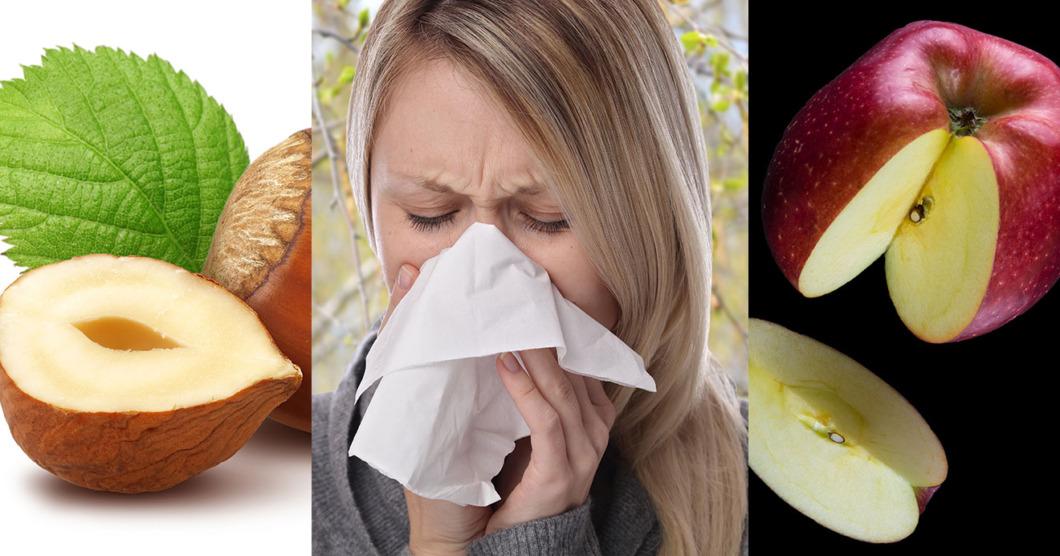 Nu finns nya råd om allergi och korsallergi