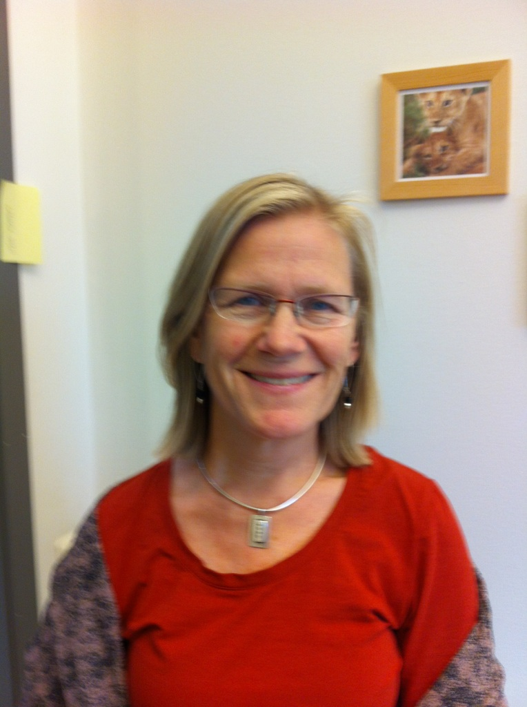 Sjukvårdspersonal i Skåne får lära sig hur de ska göra om ett barn far illa