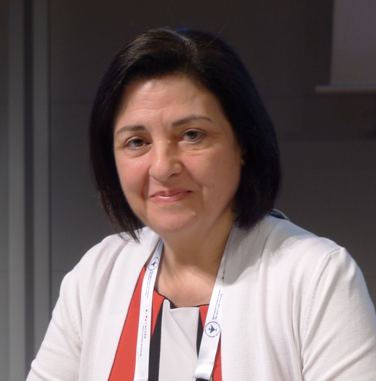 Flyktingarna utmaning för Libanons sjuksköterskor