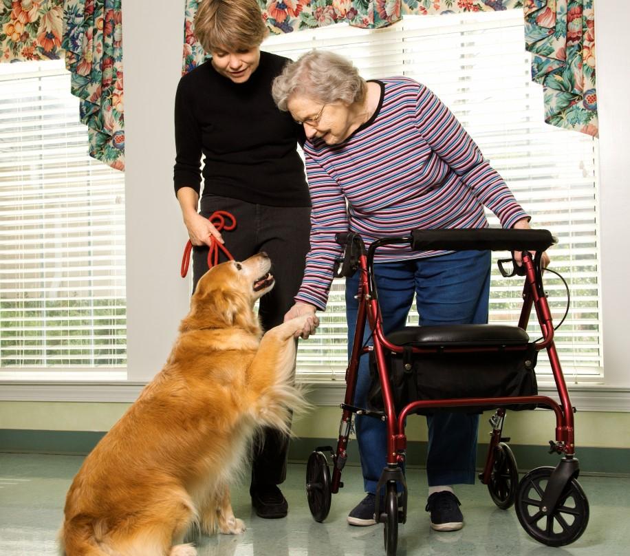 Äldre behöver mycket mer fysisk träning