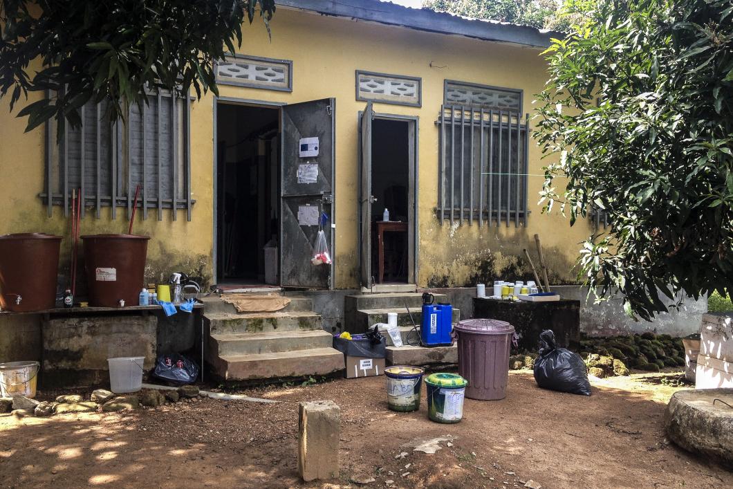 Hon ledde ebolalabbet i Guinea