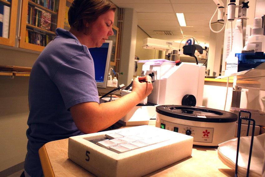 Biomedicinska analytiker prisas för fiffiga kylklampar