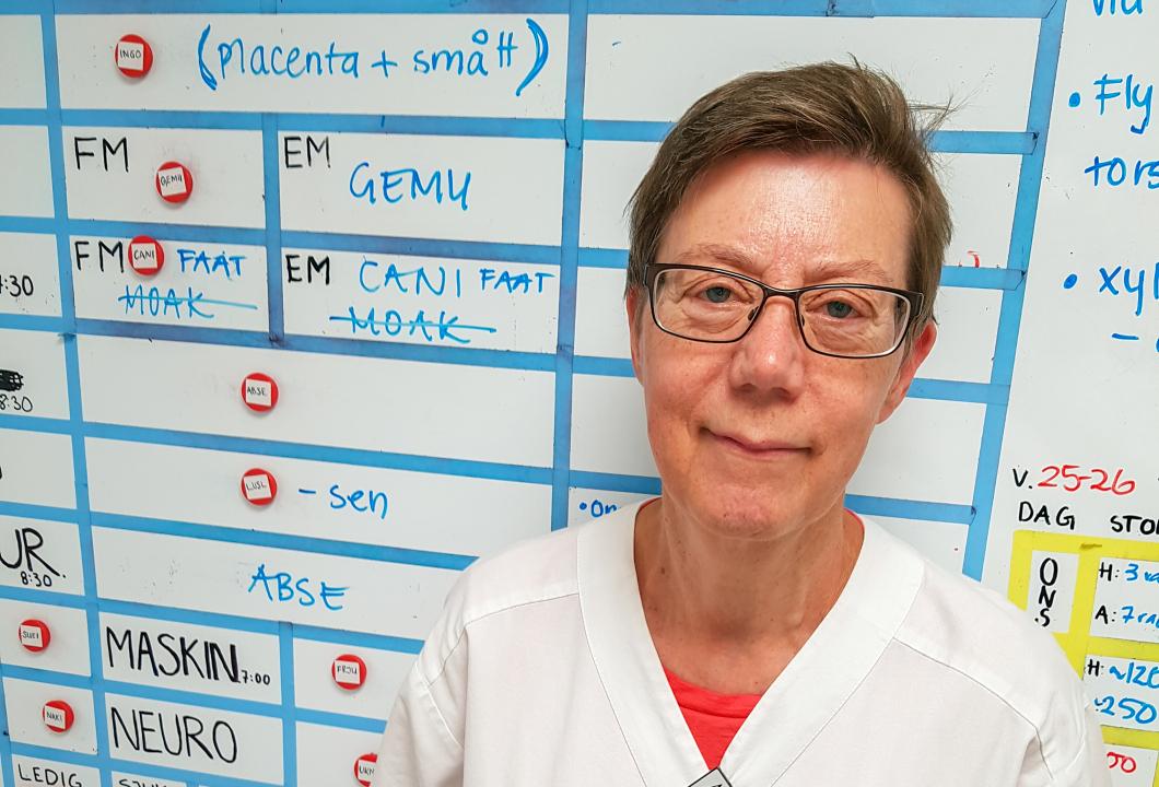 Biomedicinska analytikerna i Skåne fick lägst lönepåslag
