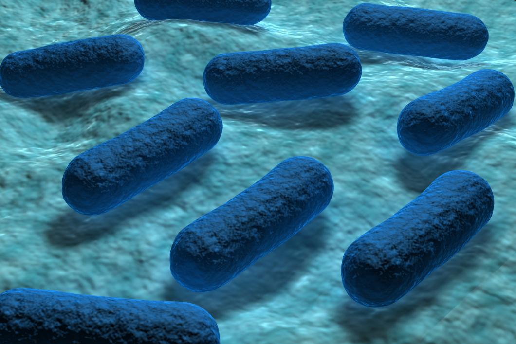 Mycket svårt stoppa spridningen av resistenta tarmbakterier