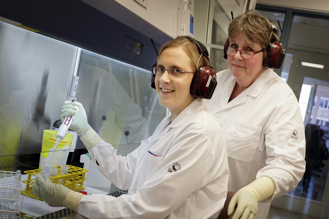 De letar läckande cytostatika