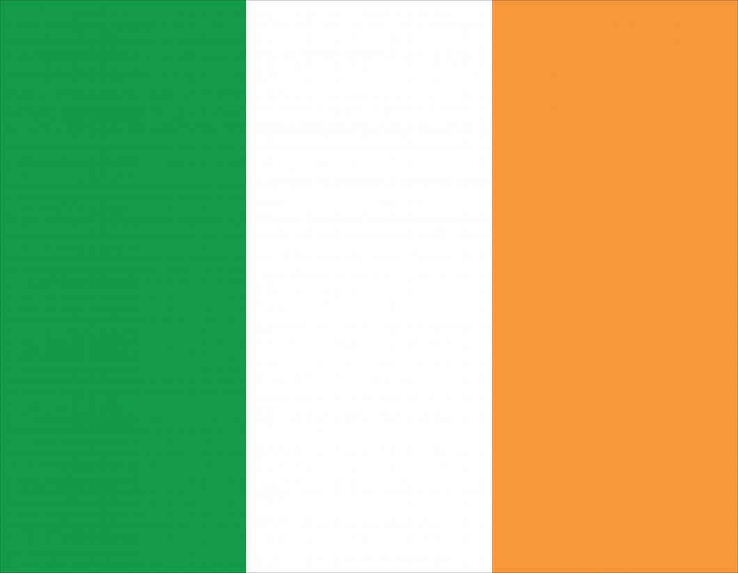 Irland folkomröstar om abort