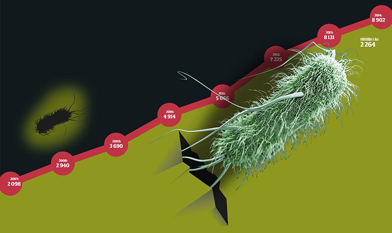 Ny bakterie    sprider fruktan