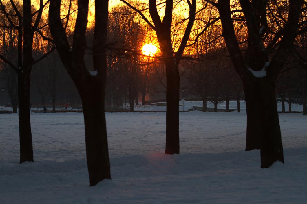 Dagsljus är viktigt för vår hälsa