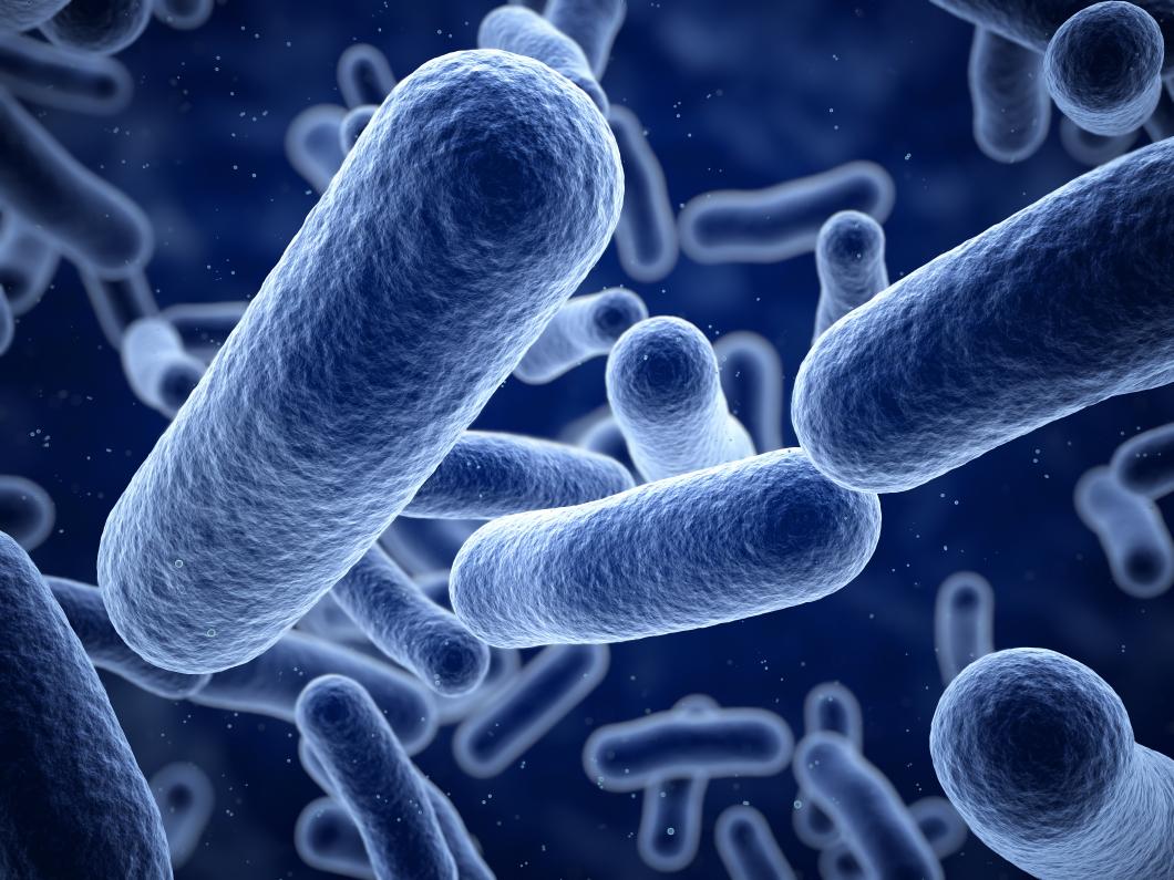 Höga nivåer av antibiotikaresistens världen över