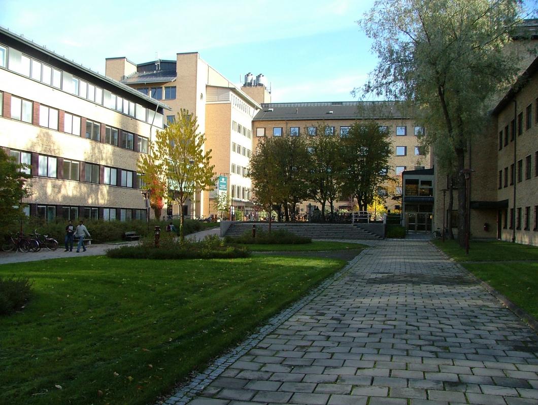 20 000 ska covidtestas på Umeå universitet