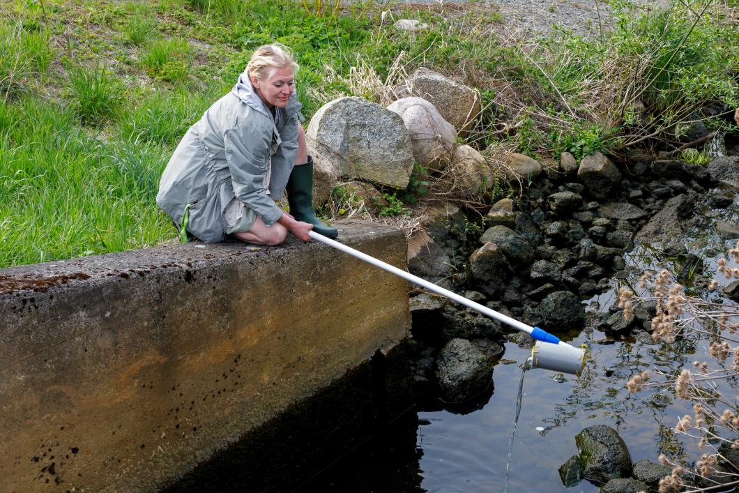 Lina använder håven för att hitta resistenta bakterier i naturen