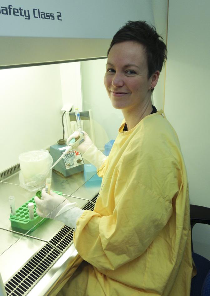 RS-smitta ger högtryck på labben