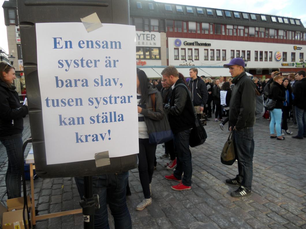 Studenter och yrkesverksamma i ny manifestation för högre löner