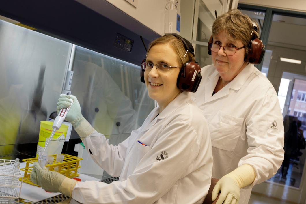 Utsatt för cytostatika – Birgitta och Maria håller koll
